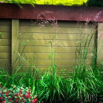 Grasses makes this wall look so rustic