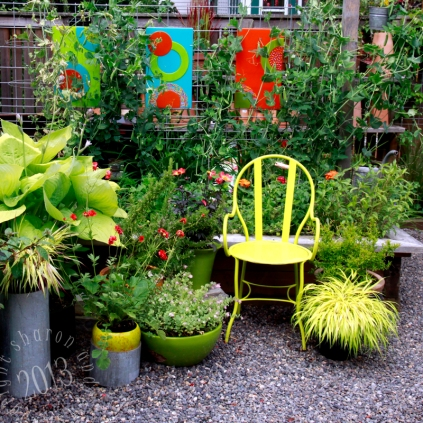 the kitchen garden, all decked out in fun colors