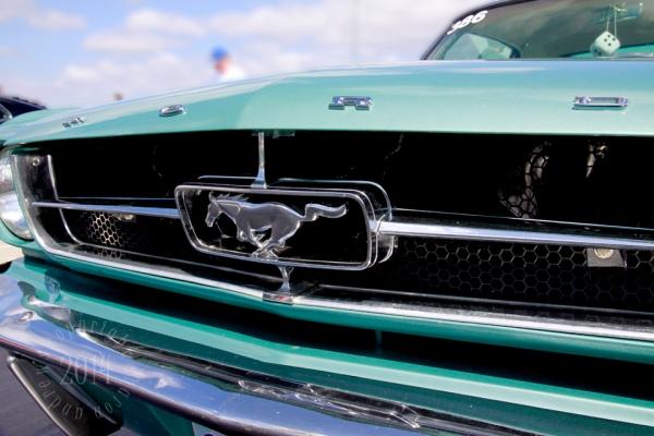 1404 Mustangs_021 Lindas Turquoise Mustang Grille