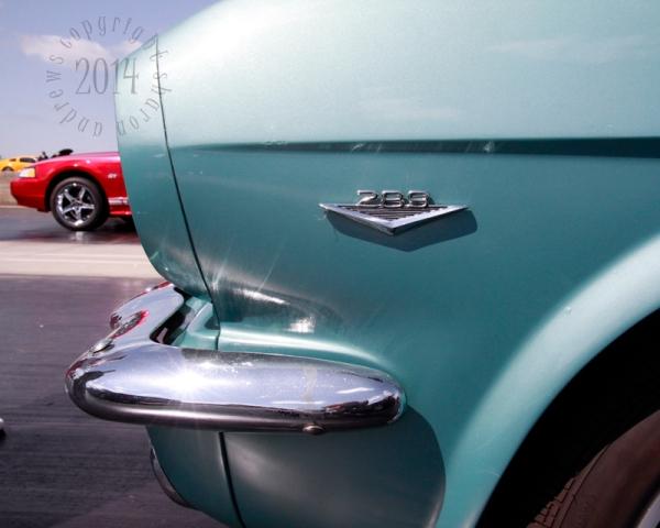 1404 Mustangs_034 Lindas turquoise