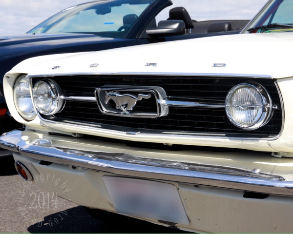 1404 Mustangs_048 1st gen white grill