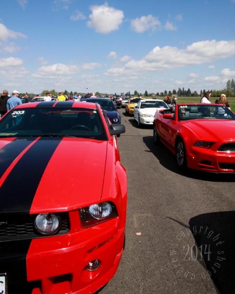 1404 Mustangs_064 Roberts Mustang