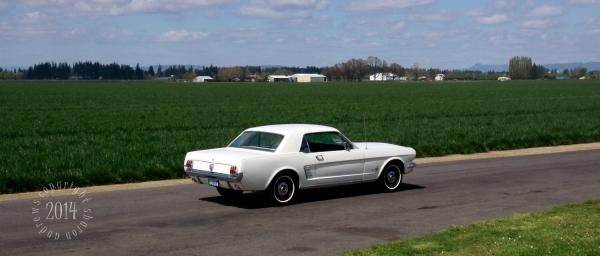 1404 Mustangs_080 American Classic