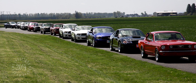 1404 Mustangs_088 line of Pony Cars « s.andrews @ oregonshar