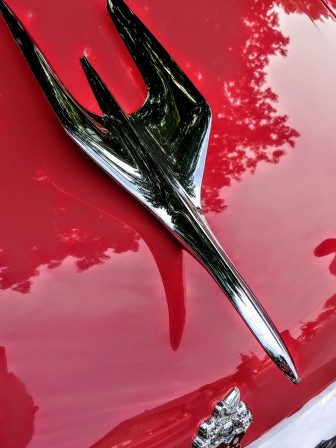 Bird hood ornament