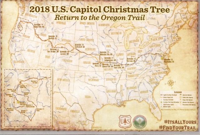 Capitol Christmas Tree postcard